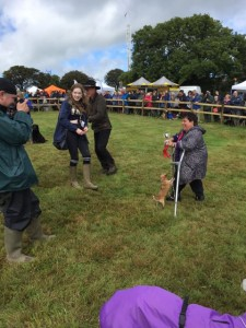 disabled, crutches, dog, chihuahua,Martin Clunes, Esmeralda Voegele-Downing,showring,crowds, Buckham Fair